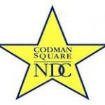Bringing Community Organizing to the Codman Square Neighborhood Development Corporation